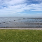 Noordkaapse zeedijk en Appingedam